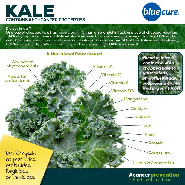 Ingredient of the Day | Kale